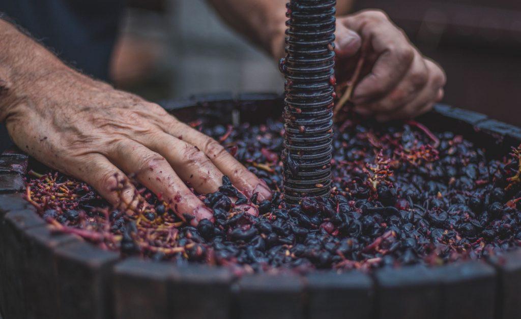 elaboracion-del-vino, elaboracion-vino